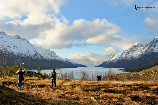Discover the Fjords of Kvaloya: a roadtrip along fjords and fishing villages, Tromso, NORUEGA