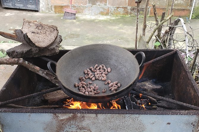 Cuenca to Guayaquil one-way tour with Cajas Park and a Cacao Farm visit, Cuenca, ECUADOR