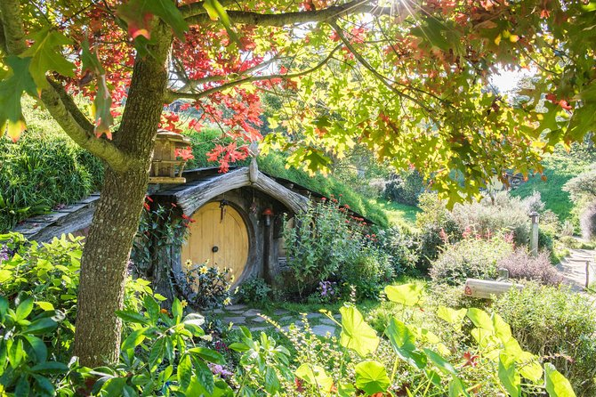 Small-Group Hobbiton and Waitomo Day Tour from Auckland, Auckland, New Zealand