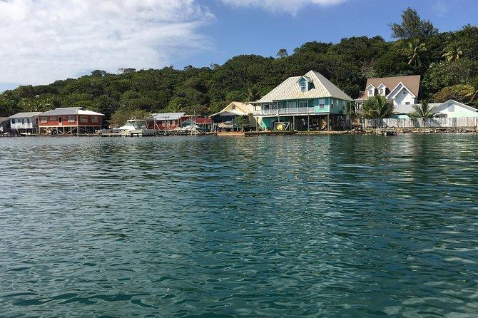 Roatan Shore Excursion: Punta Gorda Garifuna History and Mangrove Tunnel, Roatan, HONDURAS