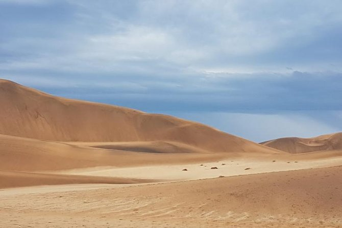 Wonderful Welwitchia Adventure 7 hour private off-road tour, Walvis Bay, Namíbia