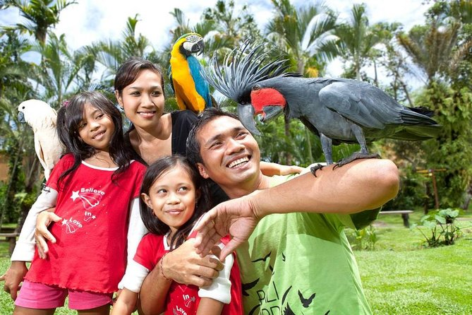 Bali Bird Park is a great place to learn about various things about birds. This park has a research and breeding program. You can invite your child to see the baby bird and know the best ways to treat it. This place also has a tropical garden completed with restaurants and souvenir shops. You can enjoy your lunch while listening to the birds singing.<br><br>Bali Bird Park is in Singapuda, between Kuta and Ubud, northeast of Denpasar. This place is amazing. This place provides a special pathway for disabled people. This place also provides baby strollers making it easier for visitors to take a walk with their babies. You will spend two hours with professional guides that will give you information about the place and everything in it. This place is opened every day except on Nyepi.<br>