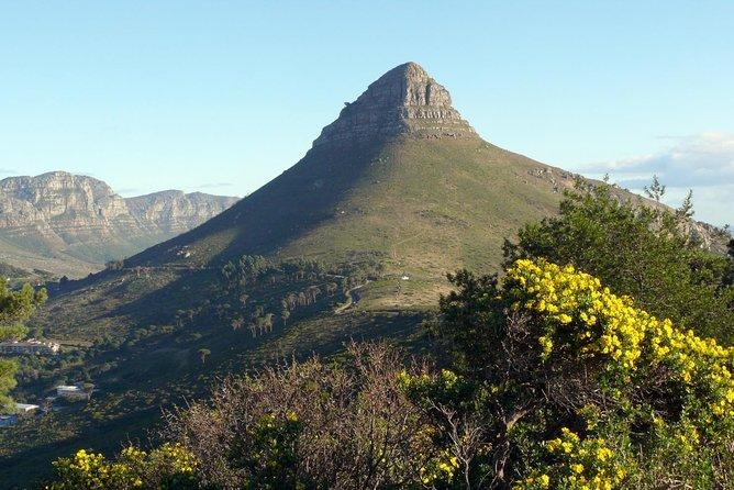 Excursão privada diurna da Cidade do Cabo ao Cape Point, Cidade do Cabo, África do Sul