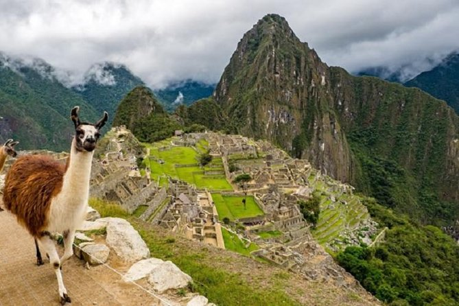 Full-Day Tour to Machu Picchu on Panoramic Train, Cusco, PERU