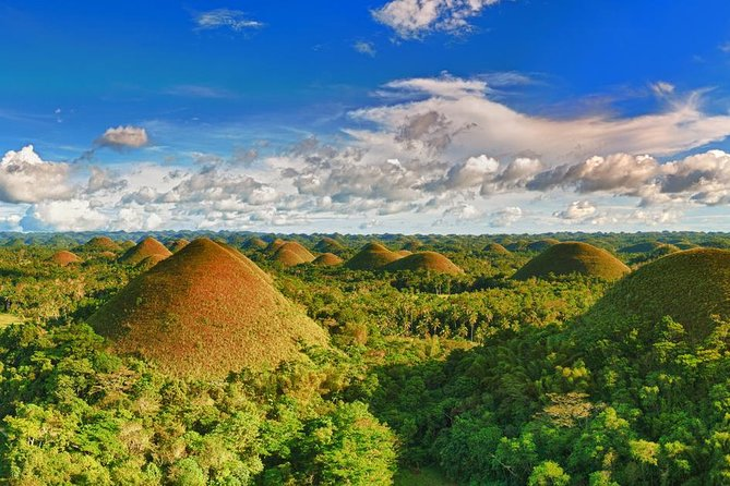 Bohol Tour Rent a Van - Bohol Day Tour, Ciudad de Tagbilaran, FILIPINAS