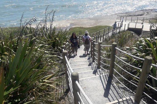 Punakaiki Blow Holes & Pancake Rocks Scenic Tour, Greymouth, NOVA ZELÂNDIA