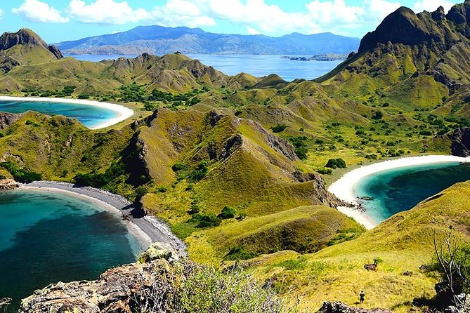 Komodo island is a world heritage site, home to the world's largest lizards or 'dragons'. Its scenic landscape of hilly savannahs are as beautiful as its beautiful reefs under its calm waves, making it one of eastern Indonesia's diving Meccas.<br><br> this tour will bring you to 6 best place in Komodo island in one day tour;<br><br>Padar Island – Komodo Island - Pink Beach – Taka Makasar – Manta Point -<br>Kanawa Island<br><br>*) we are not Fully Gurantee if you can enter this Komodo national park in 2020 due to this place will be closed for temporary by Indonesia Goverment , the date of closing is not decided yet . other alternative if Komodo national Park is Visit Rinca island with the same activities as komodo national Park<br>