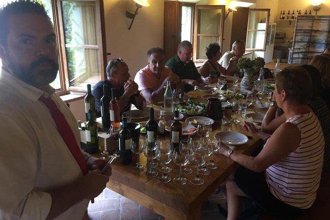 Wine tasting at Agricola Fabbriche winery, Arezzo, ITALIA
