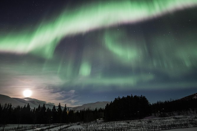 This wonderful tour takes you hunting for Northern lights with an expert top rated local Northern Lights guide. Our hunt takes you from Akureyri town to the countryside away from the bright city lights so that the Northern Lights can be seen in all their beauty and colours. The local guide will share Icelandic tales during the journey and there is a chance to buy professional photos of your night. You will receive complimentary hot chocolate and biscuits and a free retry the next evening if no Northern Lights are seen (provided we a running a group tour the next day). We also include free pick and drop off from Hotels/Guesthouses in Akureyri.