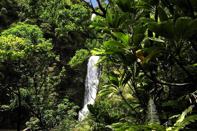 Hana para grupos pequeños por carretera de lujo y vuelo en helicóptero, Maui, HI, ESTADOS UNIDOS