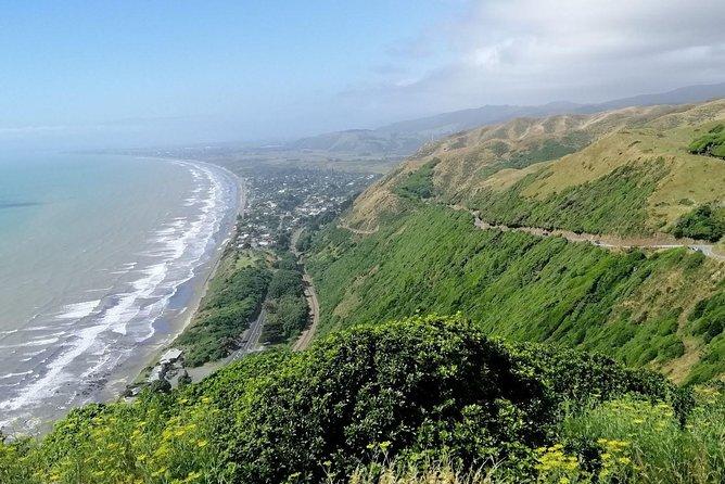 Get out of the City - Wellington Region Full-day Private Tour, Wellington, NUEVA ZELANDIA