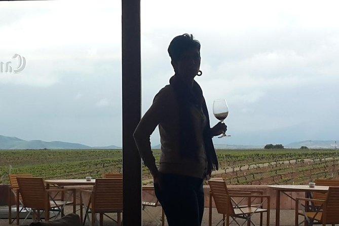 Customized Rioja food&wine tour, Pamplona, ESPAÑA