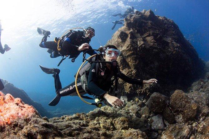 Trydive / Inmersión de introducción, La Palma, ESPAÑA