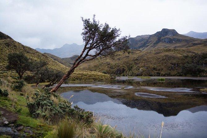 Recorrido de un día completo por el Parque Nacional de Cajas, Cuenca, ECUADOR