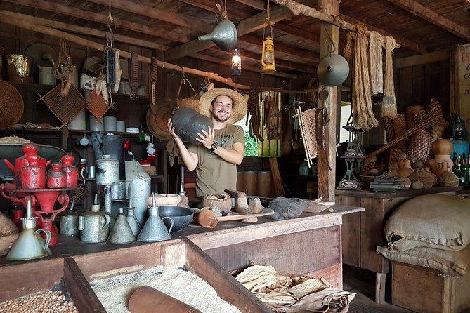 Museu do Seringal com partida em Manaus, Manaus, BRASIL
