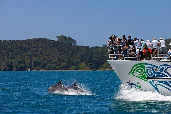 Private Tour: Bay of Islands Day Trip from Auckland, Auckland, NOVA ZELÂNDIA