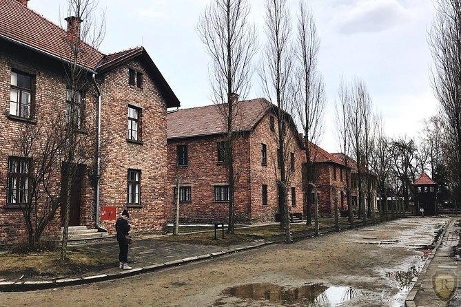 Recorrido guiado por Auschwitz y Birkenau con recogida en su hotel de Cracovia, Cracovia, POLONIA