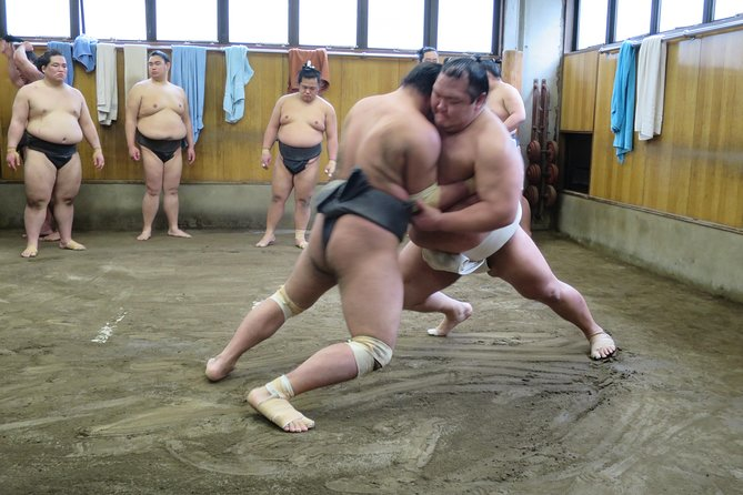 "-Watch the Sumo morning training at a Sumo table in Tokyo-<br>Did you know that the Sumo-wrestlers' day starts very early?<br>The Sumo-wrestler's who are highly ranked/skilled normally start their training from 8 am. If you go and watch the match in the Sumo Stadium it's really difficult to get a seat close to the sumo ring, but the good thing about this tour is that you get to watch their training from a very close distance!! <br><br>-A local tour guide will take you to the ""World of Sumo""-<br>How well do you know about Sumo? Do you know about the rules of the Sumo match? Do you know what the Sumo-wrestlers eat to grow big? Don't worry, that's why a local tour guide will be there for you throughout the tour to give you insights. Please feel free to ask any questions during the tour!<br><br>Magical Trip is a local tour operator with the TripAdvisor certificate of excellence that offers various types of small-group tours throughout Japan! Check out our Trip Advisor Page for more tours and our reviews!"