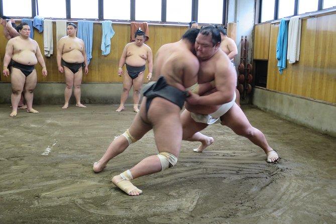 Tokyo Sumo Morning Practice Walking Tour, Tokyo, JAPON