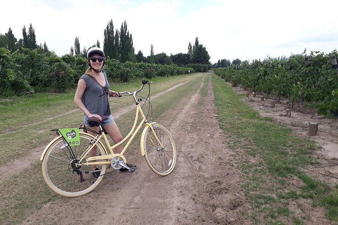 Bike, wines & lunch at Luján de Cuyo (Mendoza), Mendoza, ARGENTINA