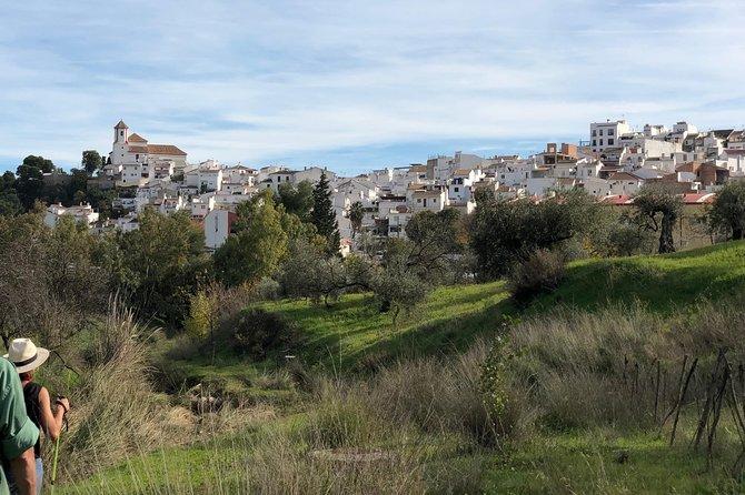 4WD Aloreña Olive Tour - Ecotourism - Sierra de las Nieves - 3-4 pax, Malaga, ESPAÑA