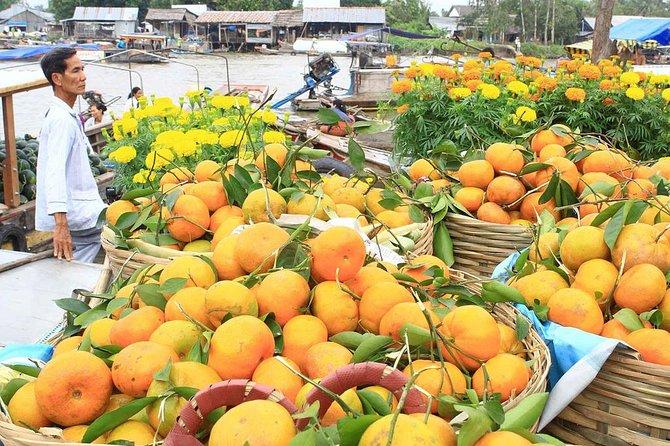 Recorrido de 2 días por el mercado flotante de Cai Rang y el delta del Mekong (noche en hotel de 5 estrellas), Ho Chi Minh, VIETNAM