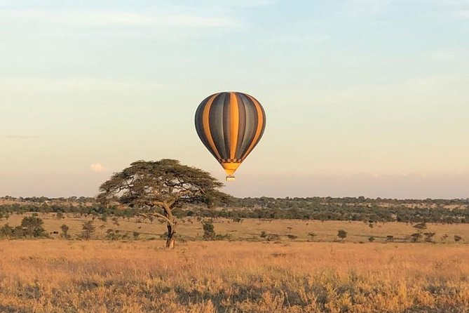 Your game viewing opportunities from the sky are endless.<br><br>Explore the untouched parts of Serengeti as you casually drift away from the surface of the earth in the early hours of the morning, safe in the basket of a hot air balloon.<br><br>Join us for a luxurious UNFORGETTABLE balloon safari in Serengeti followed by a lavish Bush Breakfast.<br><br>With a permanent base in Seronera, the heart of the Serengeti and seasonal bases in Ndutu, Kogatende, and Kirawira we follow the migration all year round.