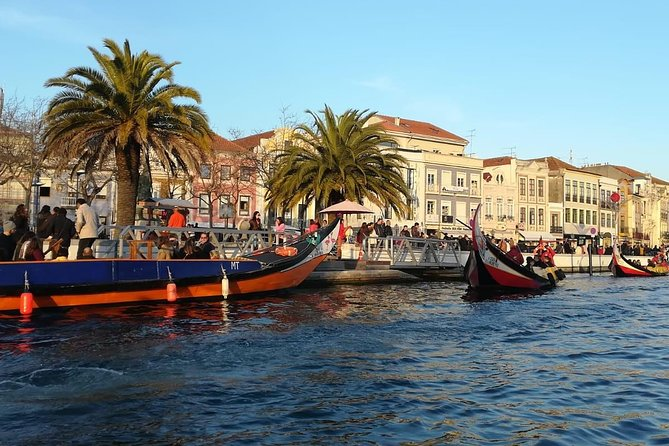 Aveiro and Coimbra small-group full-day tour from Porto with Cruise in Aveiro, Oporto, PORTUGAL