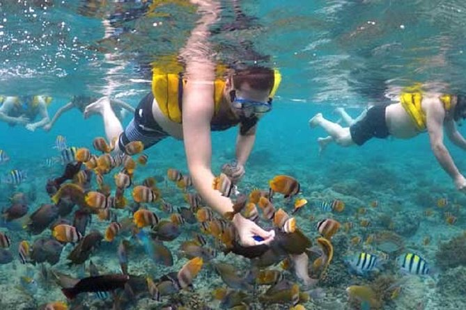 This option entitles you snorkeling tour around the Gili islands. Perfect for combination of snorkelers and non snorkelers . with 2 option choice either group tour about 4.5 hours Trip or Private Tour . Swim with sea turtles and explore the underwater life of the Gili Islands on a Half-day snorkeling trip. Discover secret spots of statue, Turttles and coral gardens.<br><br>Group Tour time table :<br><br>departure time :10.30am , end time : 15.00pm<br><br>departure time : 13.00pm. end time : 17.00pm<br><br>Private Tour time table : <br><br>its depend to your own request start time, please inform upon booking regarding the start time.<br>