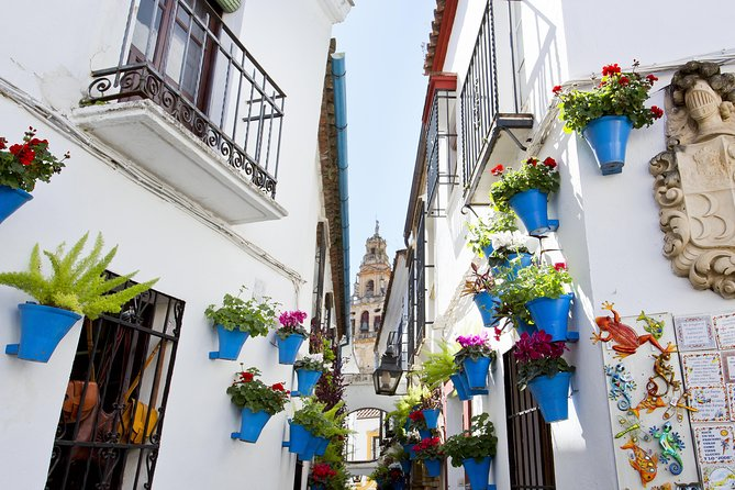 Visit the most important monuments of Córdoba on a 4-hour guided tour to learn more about the Christian, Muslim and Jewish influence in the city.<br><br>Skip the long lines to the 8th-century Mosque-Cathedral of Córdoba and marvel at its forest of columns and double arches. Admire the mihrab (apse) of the former mosque, and then take a stroll through the Jewish Quarter to visit the Synagogue, Arabic market and bronze statue of the medieval Sephardic philosopher, Maimonides.<br><br>End with a tour inside the Alcázar de los Reyes Cristianos, one of the primary residences of Isabella I of Castile and Ferdinand II of Aragon.<br><br> Entrance Tickets to all the monuments included.