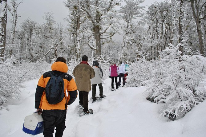 Ushuaia Night Adventure: Snowshoeing, Snowmobiling and Sled Ride, Ushuaia, ARGENTINA