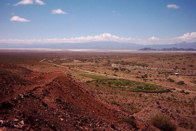 Escapada de un día a San Antonio de los Cobres desde Salta, Salta, ARGENTINA