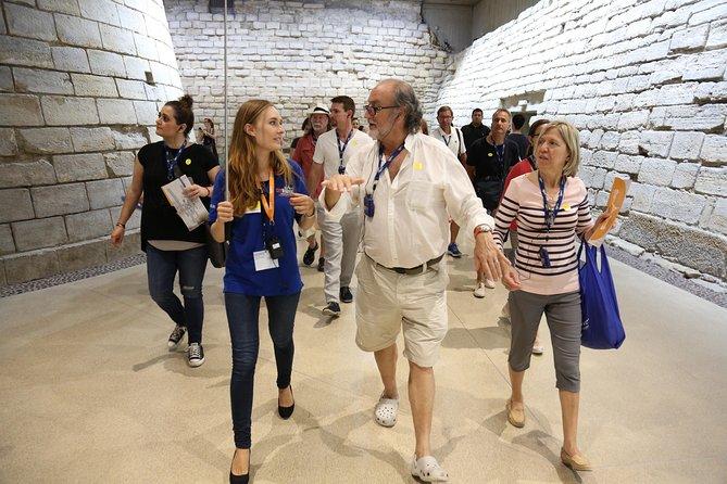 Louvre Museum Skip the Line Access Guided Tour with Venus de Milo & Mona Lisa, Paris, FRANCE