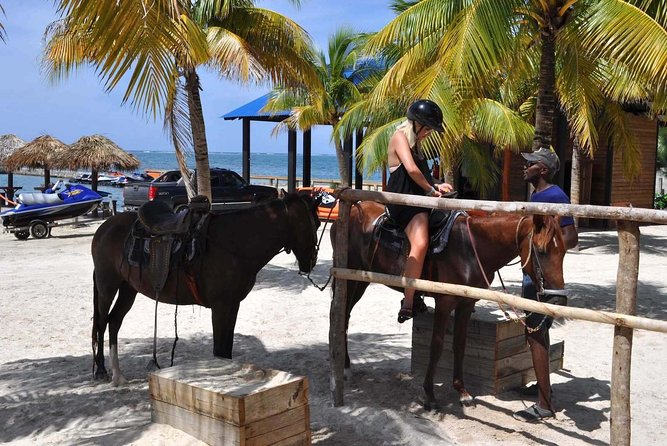 Ideal to spend a few hours in complete relax, in contact with nature and our friends horses . Now, for the lovers of the nature, the pristine beaches and wild forest, we offer horseback riding for people with all kinds of preparation. The itineraries , from the most simple to those more challenging are meticulously designed by our team of experts