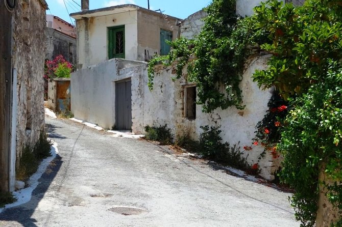 Small Villages Cretan Nature & Aposelemis canyon E-Bike tour with Café stop, ,
