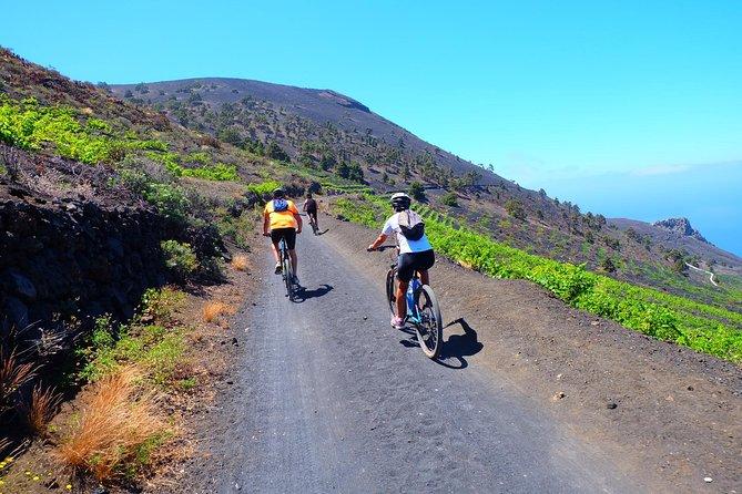 4,5-Hour Tour on Mountain Bike in Fuencaliente, La Palma, ESPAÑA
