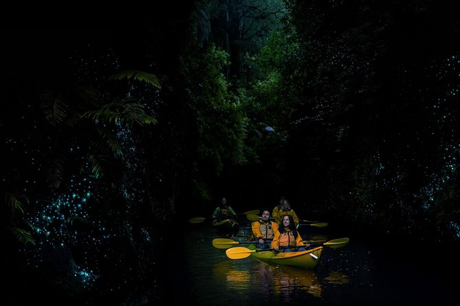 MÁS FOTOS, Kayak Glowworm Tour