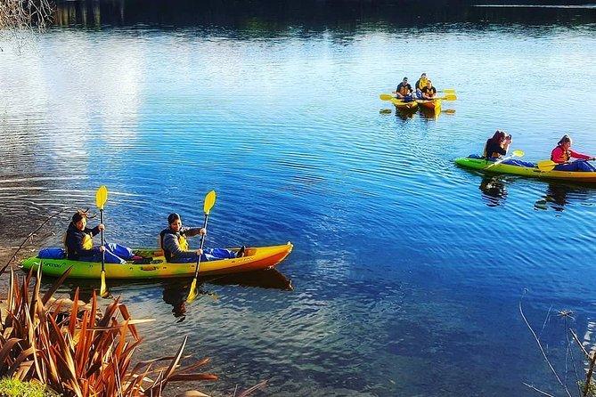 Kayak Glowworm Tour, Rotorua, New Zealand