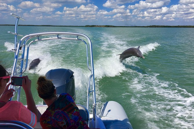 PRICE PER BOAT. <br><br>PRIVATE Adventure based Eco-Tour through The Ten Thousand Islands National Wildlife Refuge of south Florida on our custom built, United States Coast Guard Inspected and approved vessel. Throughout the duration of this 3 hour trip, guests will have the opportunity to see abundant wildlife up close such as dolphin and manatee. We will also stop at an isolated barrier island only accessible by boat to search for rare shells, swim or snorkel.