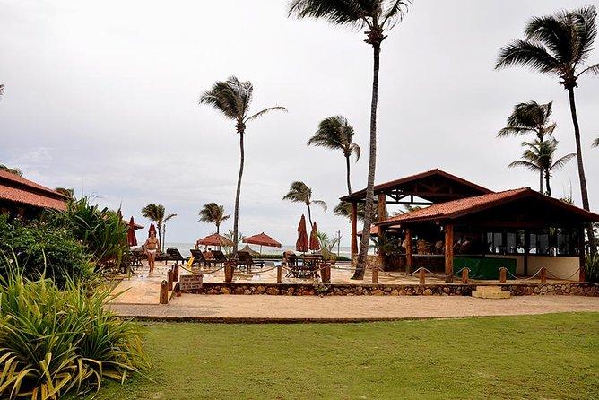 MÁS FOTOS, Tour to Lagoinha Beach
