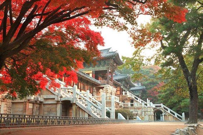 MÁS FOTOS, Gyeongju ONE DAY (History + Heritage + Culture + Local food + Craft)