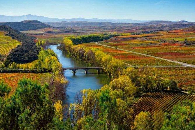 Recorrido vinícola por la Rioja Alta y la Rioja Alavesa, Pamplona, ESPAÑA