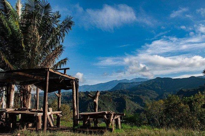 Cali, Salento and Medellin salsa to coffee tour/ 8 Days, Cali, COLOMBIA
