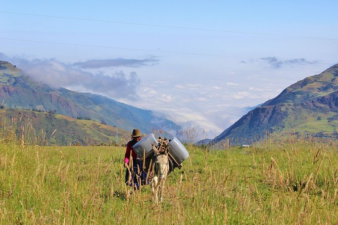 Full-Day Devil's Nose Hiking and Ingapirca Ruins Tour from Cuenca, Cuenca, Equador