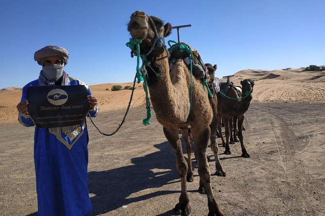 MORE PHOTOS, Ouarzazate - Desert - Fes 5 days 4 nights