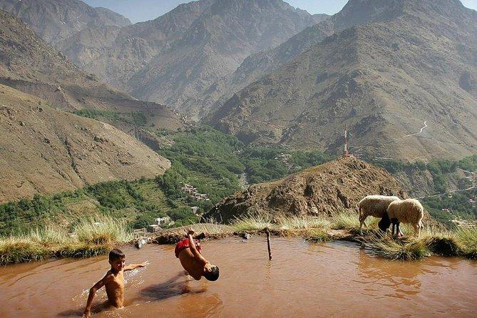 Las montañas del Atlas, los Tres Valles y las cataratas: Escapada guiada de un día desde Marrakech, Marrakech, Ciudad de Marruecos, MARRUECOS