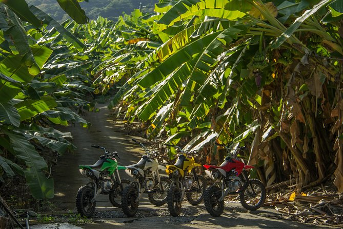 MAIS FOTOS, Hualien Banana Grove Motobiking
