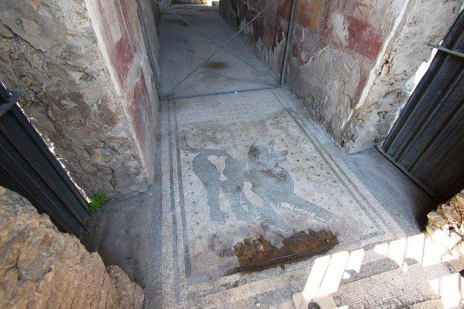 Pompeii Amalfi unique experience tour, Amalfi, ITALIA