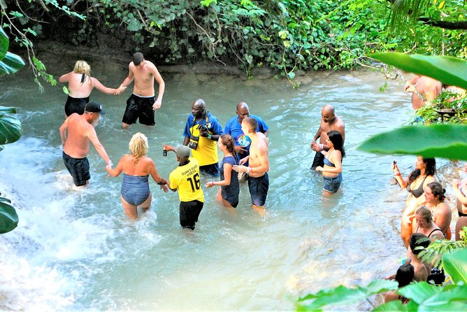Dunn's River Falls & Luminous Lagoon Guided Tour from Montego Bay, Montego Bay, JAMAICA