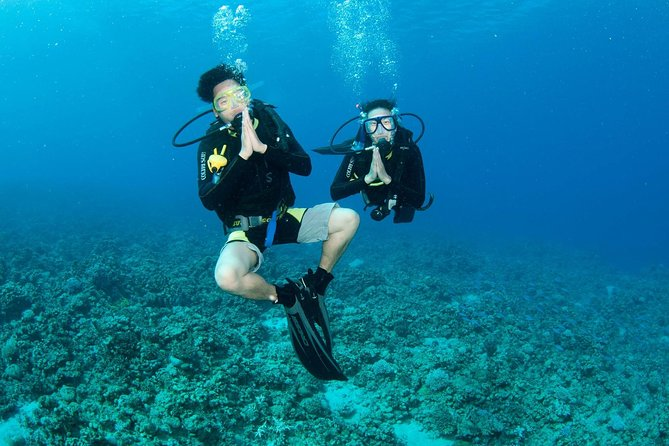 Discover Scuba diving, try diving for beginners (starts from Koh Chang), Ko Chang, Thailand
